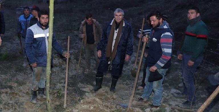 Melen Botanik Vadisi'ndeki çalışmalar hız kesmeden sürüyor