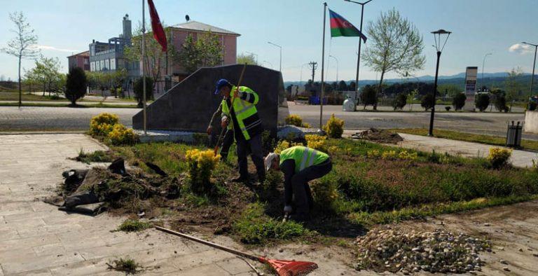 Karasu Belediyesi ağaç ve bitki alımı yapacak
