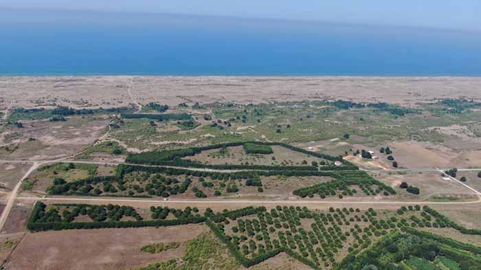 Melen Botanik Vadisi'ne idari bina ve işçi lokali yaptırılacak
